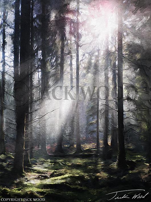 Dark Forest by Jack-Wood