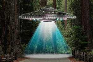 UFO by JoeyDoll