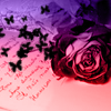 Misc Icon: Roses and Writing by ParadoxalGraphics