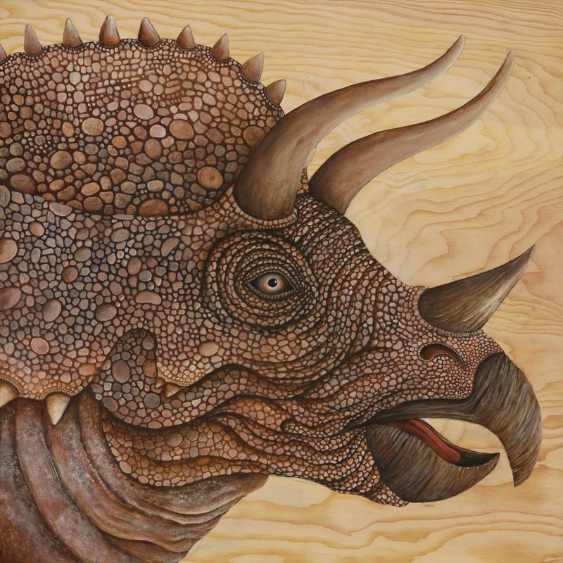 Triceratops by skeegoedhart