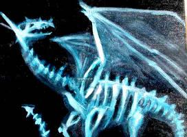 Dragon X-Ray by animatey
