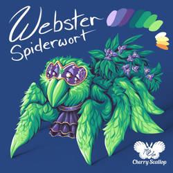Webster Spiderwort