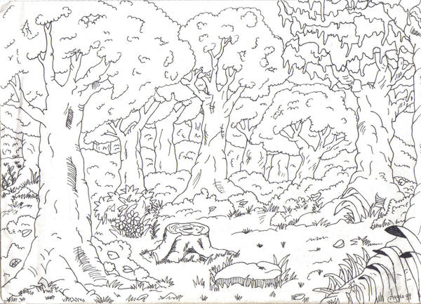 Forest scene by hidoikijo on deviantart for Forest scene drawing