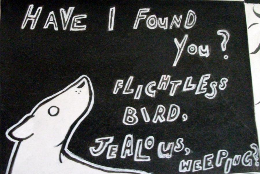 Flightless Bird American Mouth