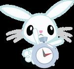 Bunny-watch