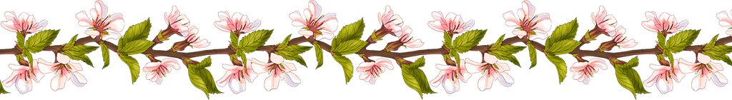 Blossom by Ja1ine