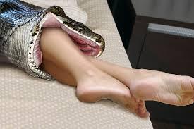 naked man eaten by snake vore