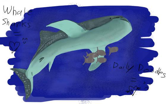 Doodle 02.17: Whale Shark