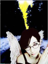 Fallen angel by herrasus