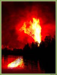 Flame by herrasus
