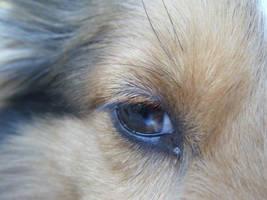 Her marble eye by Nighttttt