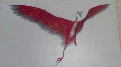 тайфумеранг фото дракона
