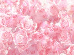 Pink Roses Texture