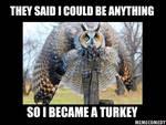 The Owl Turkey Meme
