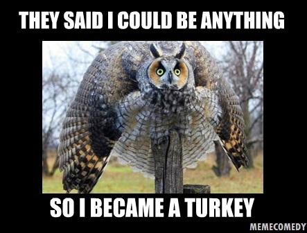 The Owl Turkey Meme by MemeComedy