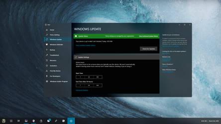 Windows 10 Polaris Desktop Settings Concept