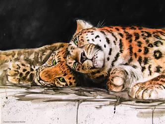 'Amur Leopards' by CherishArt