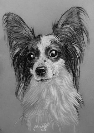 'Imona' Pet Commission by CherishLoveArt