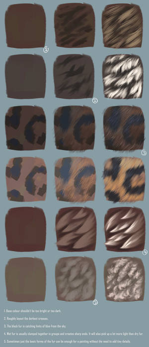 Painting Fur Step by Step