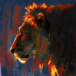 Lion Lighting Study