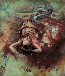 Mermaid in the Fishnet
