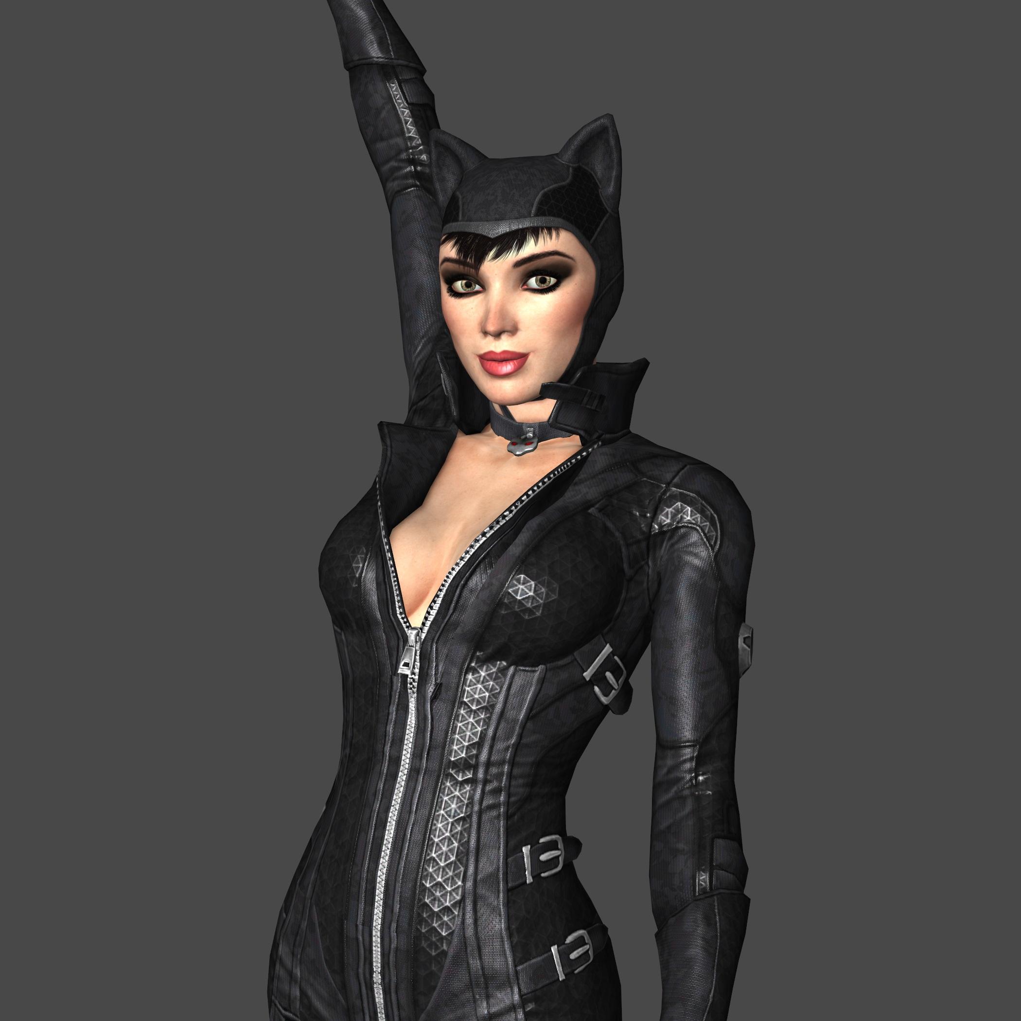 Catwoman from Batman Arkham City 01 by Subzero91 on DeviantArt