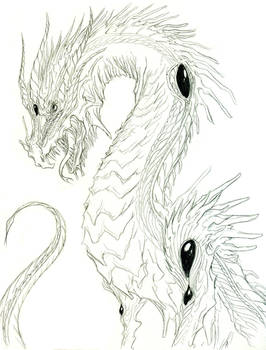 Old Dragon Sketch
