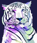 Tiger Purple