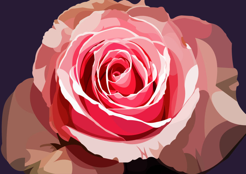 Pink vector rose