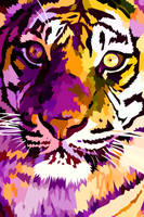 New tiger closeup by elviraNL