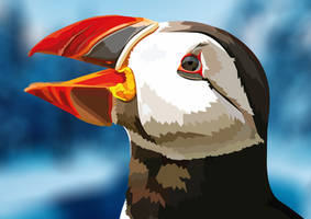 Atlantic puffin by elviraNL