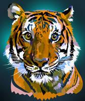 Vector tiger staring closeup.