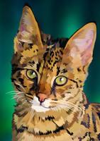 Vector Kitten by elviraNL
