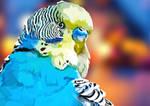 Blue City Parakeet by elviraNL