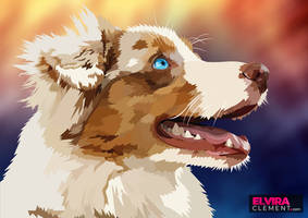 Your Best Friend - Australian shepherd by elviraNL