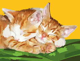 Two sleepy kittens