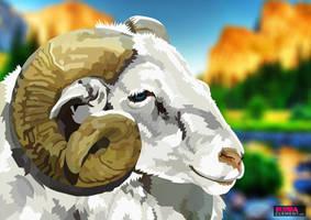 Thinthorn Sheep
