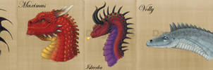 Dragons of Temeraire, A Study