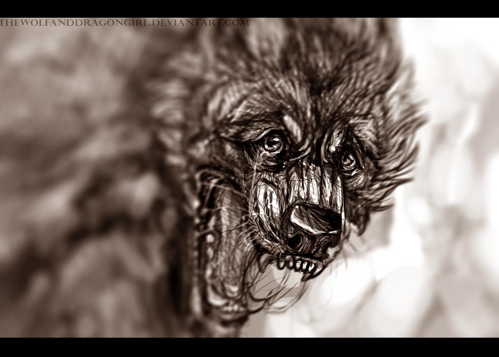 prey by Velkss