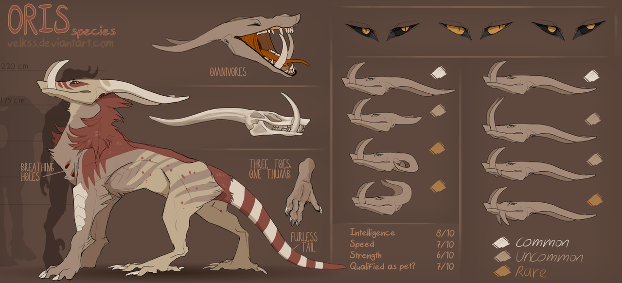 The Oris species (new species) by Velkss