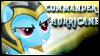 Commander Hurricane Stamp by jewlecho