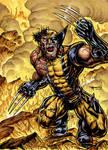 Wolverine On Fire