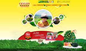 Ceylon Elite Pure Ceylon Tea