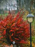 autumn theme by AnnieFF5