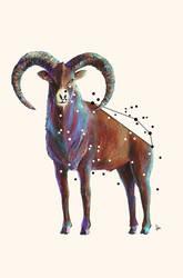 Aries the Zodiac Sign