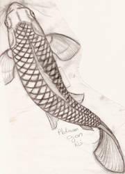 koi sketch 1 by Nuttyasafruitcake