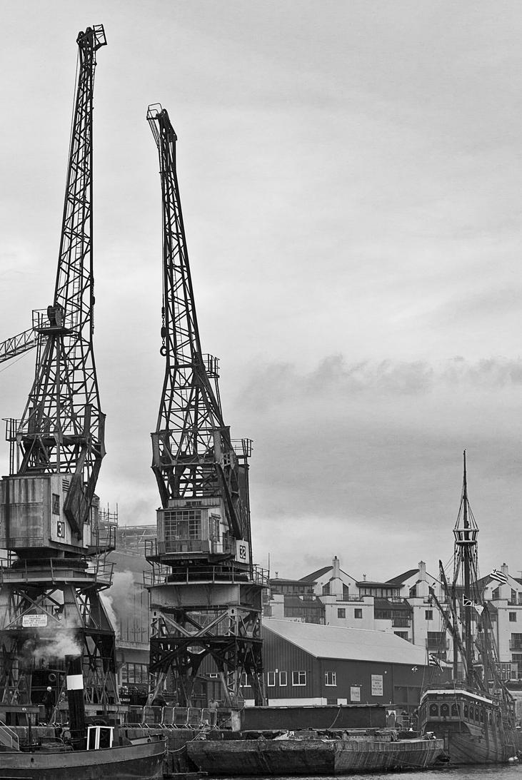 Cranes by Xs9nake