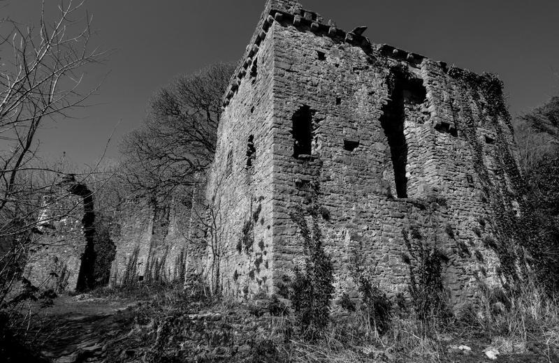 Welsh Castle by Xs9nake