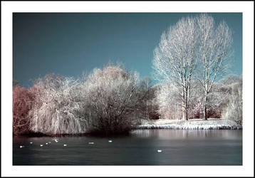 Infrared II by zider-red