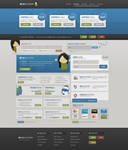 PROFESSIONAL WEB HOSTING LAYOUT